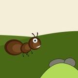 Concept of a ant. Stock Photos