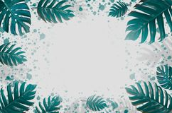 Concept art Minimal background design Leaves monster blue Tropical and leaves in vibrant bold gradient trendy Summer Tropical Leav stock images