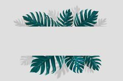Concept art Minimal background design Leaves monster blue Tropical and leaves in vibrant bold gradient trendy Summer Tropical Leav stock photos