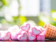 Concept au sujet de l'amour et des relations Images libres de droits