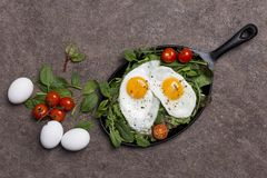 Concept background with fried eggs, cherry tomatoes and fresh green stock image