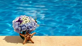 Concept background summer pool, flowers and a starfish shell stock video footage