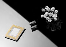 Concept balance between processor and transistors Royalty Free Stock Photo