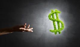 Concept bankwezen en investering door groen dollarsymbool wordt voorgesteld op concrete achtergrond die Stock Afbeelding