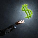 Concept bankwezen en investering door groen dollarsymbool wordt voorgesteld op concrete achtergrond die Stock Afbeeldingen