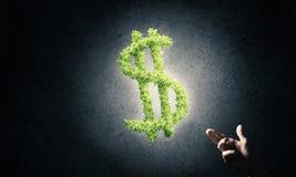 Concept bankwezen en investering door groene dollar wordt voorgesteld die symb Royalty-vrije Stock Afbeeldingen
