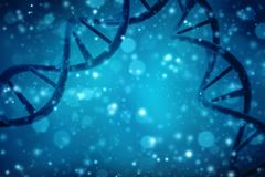 Concept of biochemistry with dna molecule in medical abstract background. 3d rendering. 3d render of Dna structure in white background, Concept of biochemistry Royalty Free Stock Image
