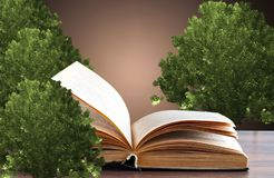 The concept of a book or a tree of knowledge with oak stock photo