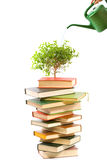 Concept.Books and watering pot Royalty Free Stock Photos
