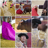 Concept of bullfighting in Spain Royalty Free Stock Photos