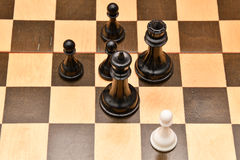 The concept of business take the right decision. Chess piece on a chessboard Stock Photography