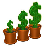 Concept: cactuses shaped as dollar. 3D rendering. Stock Photography