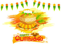 Concept of celebrating Happy Pongal festival. Royalty Free Stock Photos