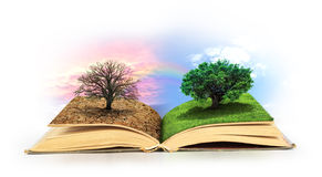 Concept of changes. Open book. One side full of grass with a life tree, different side is desert with a dead tree. Concept of doubleness Stock Images