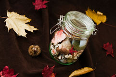 Concept of changing seasons summer in jar in autumn setting. Concept of changing seasons still life summer in jar or jared summer in autumn setting with red and Stock Images