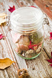 Concept of changing seasons summer in jar in rustic setting. Concept of changing seasons still life summer in jar or jared summer in autumn setting on rustic Stock Photos