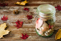 Concept of changing seasons summer in jar in rustic setting. Concept of changing seasons still life summer in jar or jared summer in autumn setting on rustic Royalty Free Stock Image