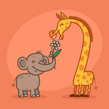 Concept, characters elephant flower and giraffe Stock Photos