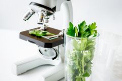Concept - check dietary supplements in laboratory on microscope. No one royalty free stock photo