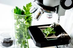 Concept - check dietary supplements in laboratory on microscope. No one stock image