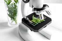 Concept - check dietary supplements in laboratory on microscope Stock Photography