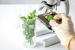 Concept - check dietary supplements in laboratory on microscope Stock Image