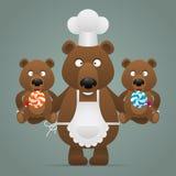Concept chef bear with cubs Stock Photos