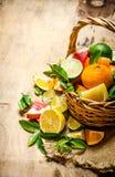 The concept of citrus. Basket of citrus fruits - grapefruit, orange, tangerine, lemon, lime . Royalty Free Stock Photography