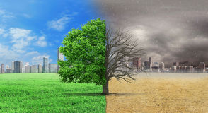 The concept of climate has changed. Royalty Free Stock Photography
