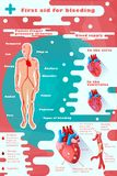 Concept color? d'Infographic de soins m?dicaux image libre de droits