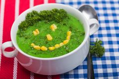 Concept. Vegetarian humour green diet soup child stock image