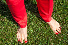 Concept of confidence feminism. Women bare feet with bright red. Concept of confidence. Women bare feet with bright red nails in red pants on green grass Stock Photography