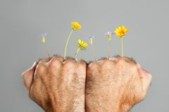 Concept and contrast of hairy man hand and flower Stock Photo