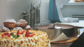 The concept of cooking. Professional pastry chef makes a delicious cake, closeup. The concept of cooking. A professional pastry chef pours a ready-made sponge stock footage