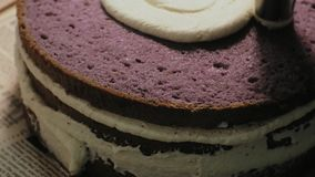 The concept of cooking. Professional pastry chef makes a delicious cake, closeup. The concept of cooking. A professional pastry chef prepares a delicious stock video footage