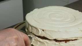 The concept of cooking. Professional pastry chef makes a delicious cake, closeup. The concept of cooking. A professional pastry chef prepares a delicious stock footage