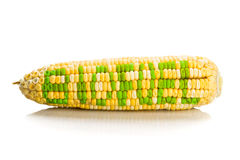 Concept of corn maize with BIOFUEL on corn seeds kernels Stock Photos