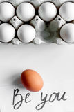 Concept of correct choice eggs on white background top view Royalty Free Stock Photo