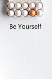 Concept of correct choice eggs on white background top view Stock Image