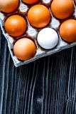 Concept of correct choice eggs on wooden background top view stock images