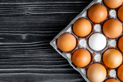 Concept of correct choice eggs on wooden background top view Stock Photos