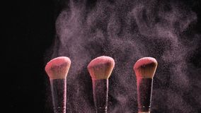 Concept of cosmetics and beauty. Make-up brushes with pink powder explosion on black background. In slow motion stock video footage