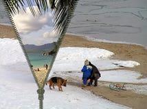 Concept - course de l'hiver à l'été Images libres de droits