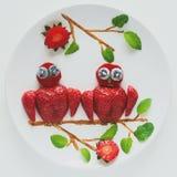 Concept créatif d'art de nourriture Hiboux se reposant sur une branche Fraise, myrtille, chocolat, composition en bon état Vue su images libres de droits