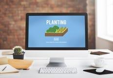 Concept croissant d'environnement de culture d'agriculture biologique photographie stock