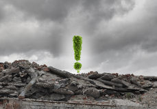 Concept d'écologie Images libres de droits