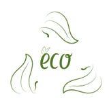 Concept d'écologie avec les feuilles vertes Images libres de droits