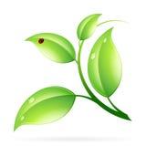 Concept d'écologie de logo illustration de vecteur