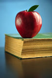 Concept d'éducation Images libres de droits