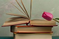 Concept d'éducation - tulipes et livres de fleurs Photos stock
